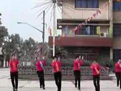 万年青广场舞 《疯狂迪斯科》