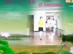 濮阳心语广场舞 一片艳阳天 编舞萱萱