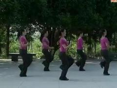 瑞金丽萍广场舞 《套马杆》