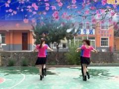 蝶依广场舞 《哥哥妹妹》 双人舞 含背面动作分解教学