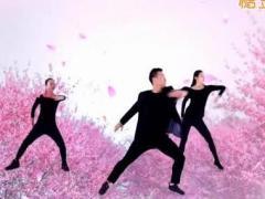 王广成广场舞 《凉凉》 含背面动作分解教学