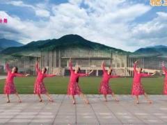 苏州盛泽雨夜广场舞 《普雅花》 中三 含背面动作分解教学