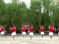 蝶依广场舞 《好美丽的姑娘》 含背面动作分解教学