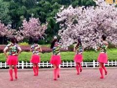 金灿灿广场舞 《又见山里红》 步子舞团队版 含背面动作分解教学