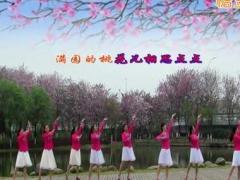 广西柳州彩虹健身队、桃花美桃花开、编舞无边、瓦