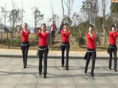 沅陵燕子广场舞《快乐广场》