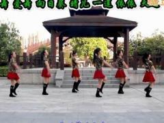 太湖一莲广场舞 《万树繁花 》水兵舞入门舞 含背面动作分解教学