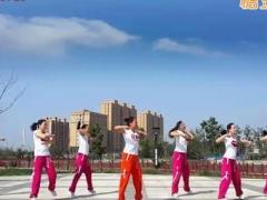 舞动旋律2007健身队 《黄土高坡》 含背面动作分解教学