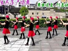 沅陵燕子广场舞 《雪山姑娘》 单人水兵舞 含背面动作分解教学