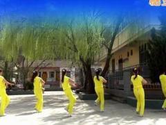 蝶依广场舞 《爱是海》DJ 含背面动作分解教学
