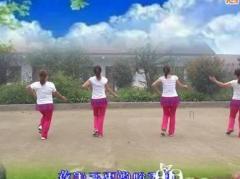 听语广场舞 映山红 团队版