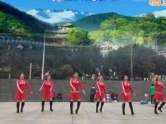 重庆叶子广场舞 《爱情过客》DJ版 含背面动作分解教学