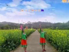 广西柳州彩虹姊妹花《天边的巴格拉宗》演示编舞応子