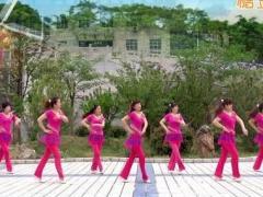 蝶依广场舞《美好的守候》32步 含背面动作分解教学