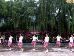 蝶依广场舞 《爱的殿堂》 含背面动作分解教学