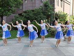杨丽萍广场舞 《情歌赛过春江水》 民族舞 含背面动作分解教学