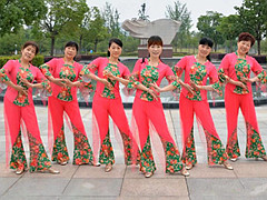 动动广场舞 《郑州女孩》 慢三抒情 含背面动作分解教学