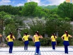 蝶依广场舞 《与爱共舞》32步 含背面动作分解教学