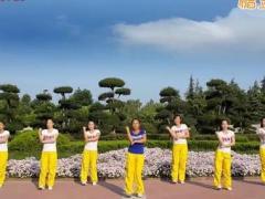 舞动旋律2007健身队 《康电情歌》 含背面动作分解教学