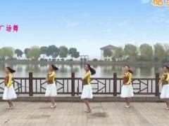 苏州雨夜广场舞《这样的感觉真好》32步 含背面动作分解教学