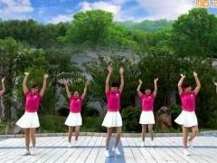 蝶依广场舞 《向着太阳》 含背面动作分解教学
