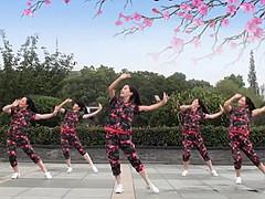 茉莉广场舞 《来吧姑娘》DJ 含背面动作分解教学