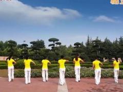 舞动旋律2007健身队 《昨日重现》76步 含背面动作分解教学