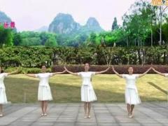 苏州盛泽雨夜广场舞 《玉水云屏》 中三舞 含背面动作分解教学