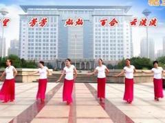 金灿灿广场舞 手心里的温柔 原创附教学 团队版