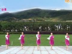 苏州盛泽雨夜广场舞《天边的情歌》原创附教学