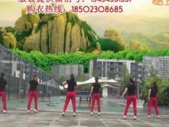 重庆叶子广场舞 爱情让我心痛 原创32步 附教学