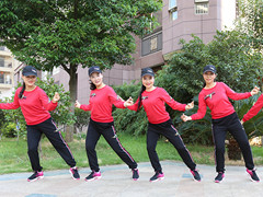 杨丽萍广场舞《傻女人》DJ原创现代舞