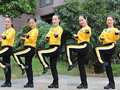 杨丽萍广场舞《老婆最大》DJ时尚动感32步 含动作教学