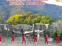 重庆叶子广场原创步子舞 男人女人不容易 附教学