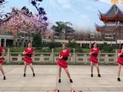 新风尚广场舞 爱情雨夹雪DJ 原创附教学