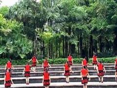 漓江飞舞原创 花落花有情 初级入门32步舞 附教学