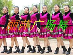 杨丽萍广场舞 《痴情的牵挂》 韵律32步入门舞