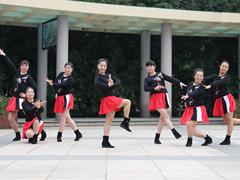 茉莉广场舞 《维西谣》 原创僳僳风水兵舞
