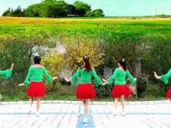 蝶依广场舞 蝴蝶翩翩飞 DJ32入门舞蹈原创 附教学