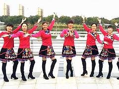 青儿广场舞 《丝路豪情》 含背面动作分解教学