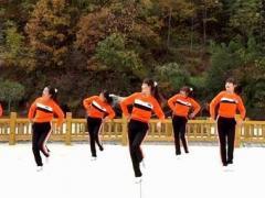 蝶依广场舞 DJ的歌 健身舞原创 附教学