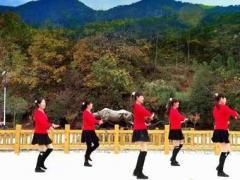 蝶依广场舞 亲爱的姑娘 简单32步原创 附教学