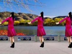 乔茜广场舞 小河边 原创32步入门 附教学