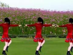 太湖一莲亚虎娱乐,亚虎娱乐app,亚虎777娱乐老虎机 你是我今生的依靠 原创水兵舞附教学