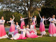 茉莉广场舞 《又见江南雨》 原创古典舞民族舞 附教学