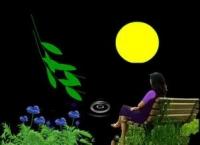 对着月亮说声我爱你