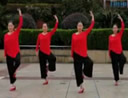 応子广场舞 问情 现代形体舞 含动作分解教学 分解动作 mp4