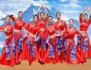 春英广场舞 天上的纳木错 藏族舞蹈 含教学 分解动作 mp4