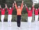 茉莉广场舞 远走高飞 32步对跳轻松愉快健身操 mp4
