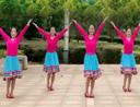 春英广场舞 阿妈教我的歌 藏族舞 含分解教学 分解动作 mp4